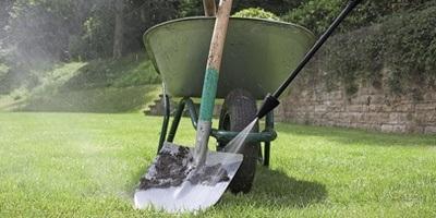 Limpeza de jardim